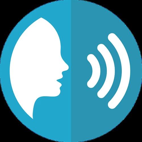Voice Program